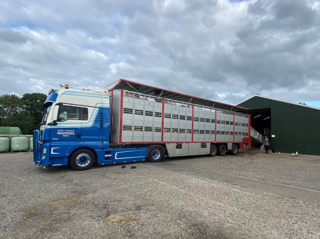 Speciaal dieren transport